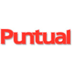 logo Puntual